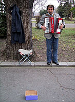 Accordion.jpg (20311 バイト)